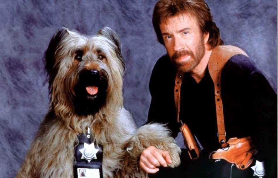 Chuck Norris Movie Top Dog